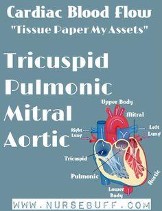 cardiac blood flow nursing mnemonics