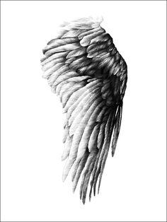 Poster - The wings of Ikaros