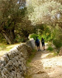 Sóller to Deià footpath... great day out!