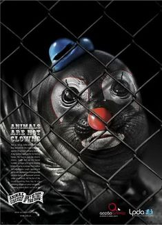 This is a combined campaign from two Portuguese animal rights organisations: Acção Animal and Liga Portuguesa dos Direitos do Animal (LDPA). They want to raise awareness of the plight of circus animals by painting sad clown faces on the animals. Clowns, Animal Action, Animal Protection, Wildlife Protection, Stop Animal Cruelty, Save Animals, Wild Animals, Animal Posters, Creative Advertising