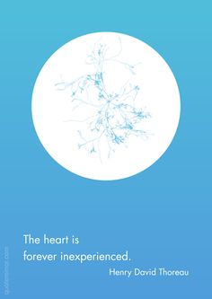 The heart is forever inexperienced.  –Henry David Thoreau #fresh #heart http://quotemirror.com/s/b4cp8