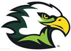 Life University Running Eagles, NAIA/Division I, Mid-South Conference, Marietta, Georgia Brand Identity Design, Logo Design, Branding Design, Corporate Branding, Sports Art, Sports Logo, Hawk Logo, Graffiti Drawing, Bird Logos