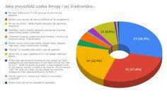 Wyniki ankiety: I co dalej? Chart