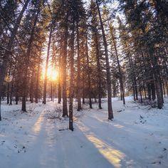 «A sunny memorie from my @travelalberta experience - taken in Banff #explorealberta»