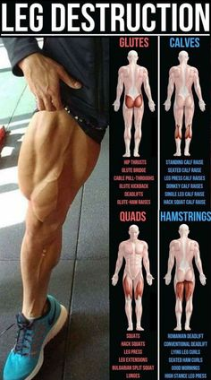 Build Bulging Bigger Legs Fast With This Workout Now, there will come a time when you wrestle with the thought of skipping leg day. You're only human. But you mustn't. You need to stay strong.Leg days are so important. Well, we're glad you asked. Leg Day Workouts, Gym Workout Tips, Weight Training Workouts, Glutes Workout Men, Total Gym Workouts, Killer Leg Workouts, Squat Workout, Body Weight Training, Muscle Building Workouts