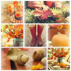 Autumn by lucia and mapp, via Flickr