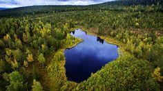 Järvi-Suomi Kittilä http://www.raymond.fi/#!metsaan-meni