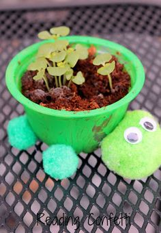 Turtle Herb Planters Kids Craft. I'm going to make this with my kids. How cute!