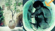 #GreenBurial  enterrar-arbol-349eivwbeo5fajoniiku8a