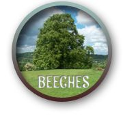 Beeches Farm Campsite - camping recommendation from Camping Europe, Camping Uk, Camping Items, Camping Holiday, Camping Places, Camping Spots, Outdoor Camping, Uk Campsites, Forest Of Dean