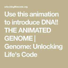 63 best genetics structure of dna replication images on explore the human genome project within us learn about dna and genomics role in medicine and society at the smithsonian national museum of natural history fandeluxe Images