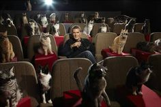 Antonio Banderas must have invited some kitty pals for the premiere of Puss In Boots