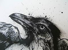 Mike Hill - Drawings  Black Ink Raven