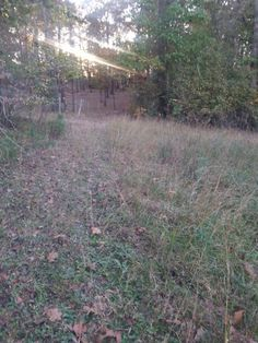 4 acres of wooded land. Was an old home place with an old house on it that is falling in. Has utilities on the property. Old well, septic and electric. At a dead end lane - last property in Cove AR