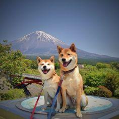 富士山と記念撮影!!