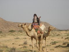 Never before or since, seen a Rashaida woman out and about on a camel! African Tribes, African Art, People Of The World, Animals Of The World, Bactrian Camel, Deserts Of The World, Desert Life, African Culture, Native Art