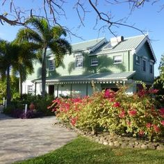 House Sitting in Saint Kitts