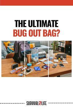 Bug Out Bag, Bugs, Camping Survival, Fingerprints, Reading, Fan, Beetles, Reading Books, Hand Fan