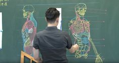 Impermanent Anatomical Drawings on Chalkboards by Chuan-Bin Chung