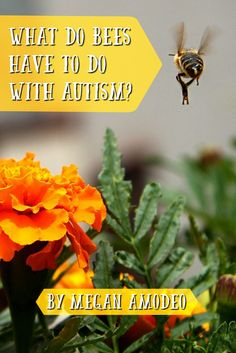 What Do Bees Have to Do with Autism? - http://geekclubbooks.com/2017/03/bees-and-autism/?utm_campaign=coschedule&utm_source=pinterest&utm_medium=Geek%20Club%20Books&utm_content=What%20Do%20Bees%20Have%20to%20Do%20with%20Autism%3F
