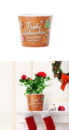Fur Die Beste Oma Besonderes Blumentopf Weihnachtsgeschenk
