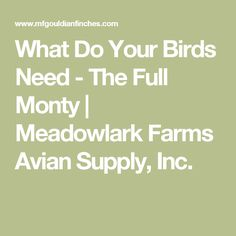 What Do Your Birds Need - The Full Monty | Meadowlark Farms Avian Supply, Inc.