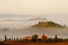 Hügellandschaft der Toskana im Morgennebel Crete Val d' Orcia Pienza