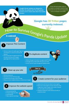 #Infographic offering advice on how to survive #Panda update or recover if your site is penalized.