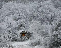 frozen white cabin