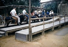 1973 - Pack Mules Through Nature's Wonderland closes...sad day!