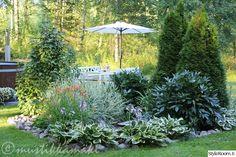 piha,puutarha,kukkia,kukkapenkki,pioni,vesiaihe,suihkulähde
