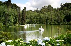 Lago Negro - Gramado - Rio Grande do Sul