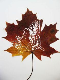 Angel leaf cut art by: Omid Asadi                                                                                                                                                                                 Más