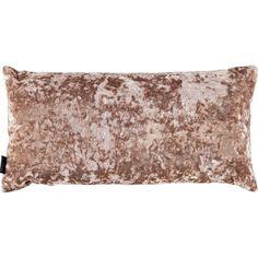 Paoletti Oyster Crushed Velvet Cushion 30x60cm Tk Maxx