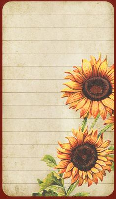Sunflowers on lined card with dark red border.