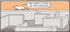 Rhymes with Orange Comic Strip for February 08, 2015   Comics Kingdom
