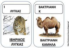 ΖΩ11 Pet Day, Animal Crafts, Literacy, Animals, Animales, Animaux, Animal Memes, Animal, Animais