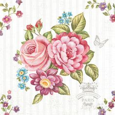Elegant Roses II Art by Stefania Ferri at AllPosters.com