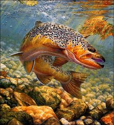 awesome fishing painting | Fishing Art by Sussino