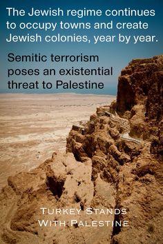 Palestine #facts 2014