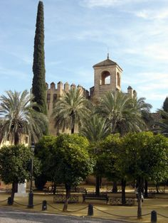 Córdoba - Alcázar de los Reyes Cristianos  - photo: Robert Bovington  #Cordoba #Andalusia #Spain #España  http://bobbovington.blogspot.com.es/