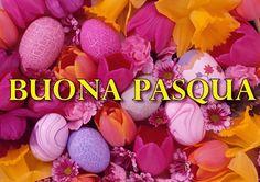 Tanti auguri di Buona Pasqua da Modalizer!