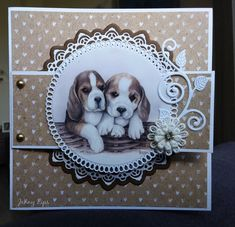 Hunkydory Crafts, Lace Wedding Invitations, Explosion Box, Animal Cards, Gift Cards, Handmade Cards, Making Ideas, Dog Cat, Card Making