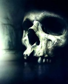 Znalezione obrazy dla zapytania skulls airbrush
