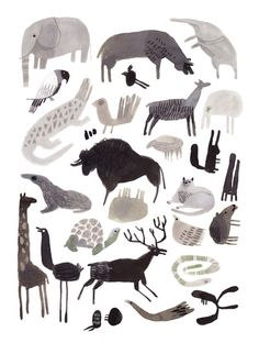 felicita Sala. The greyscale pallet works well with animals, within my own work could use this and then mix it up by adding a really colourful animal in the line up