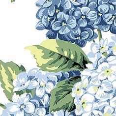 HYDRANGEA, Blue on White, F73905, Collection Signature Collection from Thibaut
