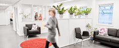 Sisältömarkkinointikysely - viestintätoimisto Meditan blogi Bean Bag Chair, Furniture, Home Decor, Decoration Home, Room Decor, Beanbag Chair, Home Furnishings, Home Interior Design, Bean Bag
