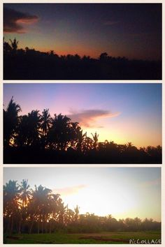 My favourite 5.30am place to do my morning ritual is on my deck watching the sunrise over the coconut trees