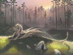 White Dragon Fantasy Myth Mythical Mystical Legend Dragons Wings Sword Sorcery  Magic