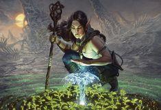 Lifespring Druid by Will Murrai